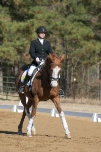 Intercollegiate Dressage