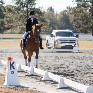 Dressage at St. Andrews