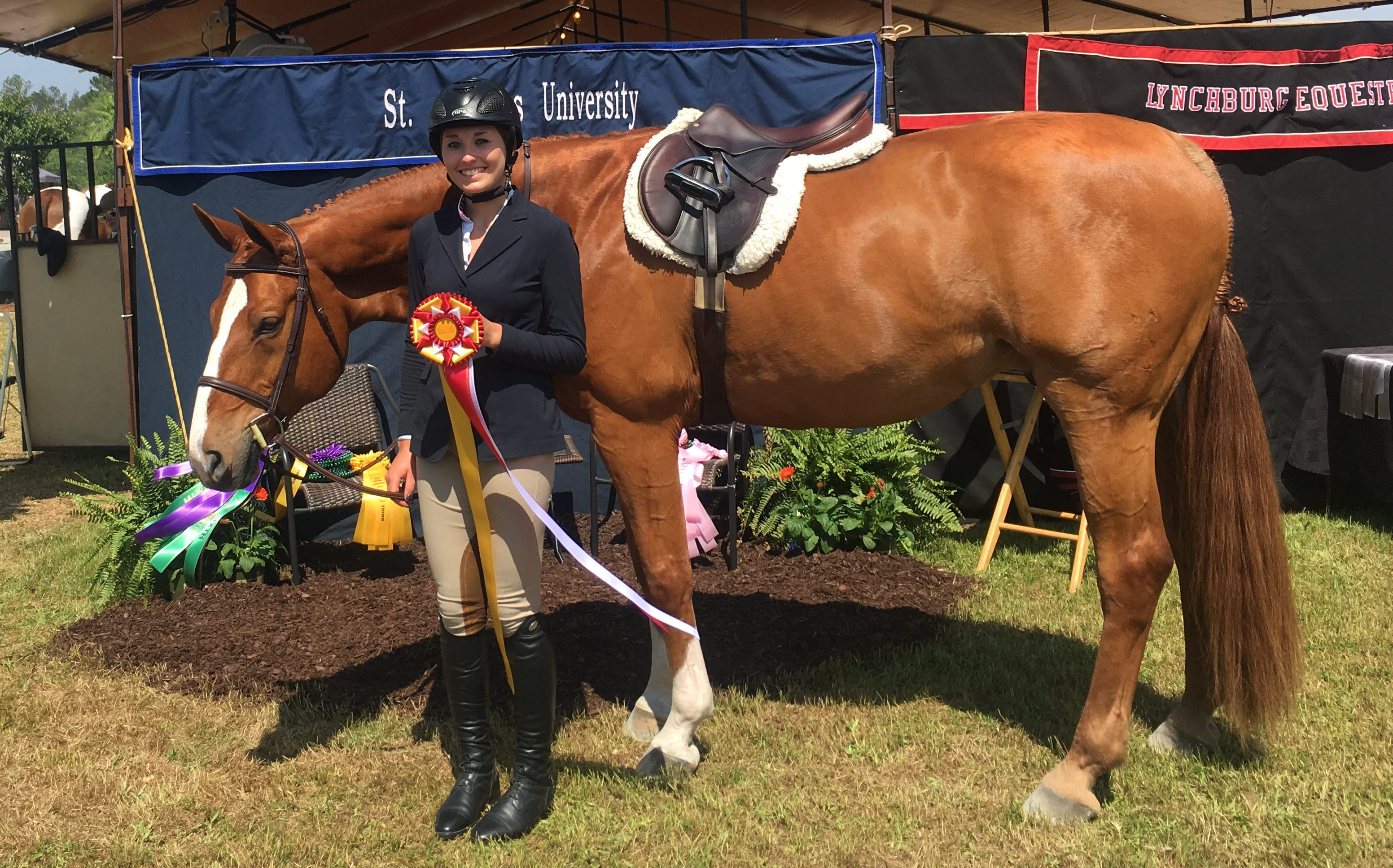 Sabrina V. Reserve Champion Rider Overall 2017
